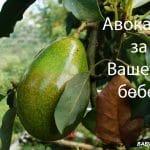 Авокадо за вашето бебе