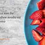 Кога и как да въведем ягоди на бебе